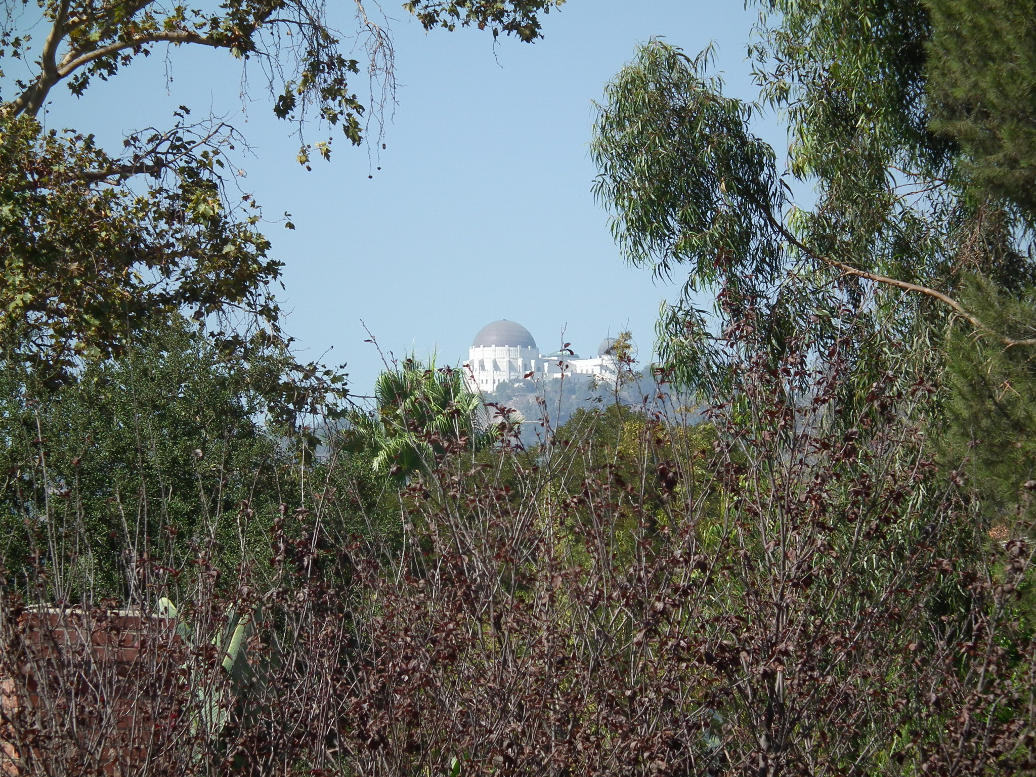 griffith observatory, los feliz, franklin hills, view property, real estate development